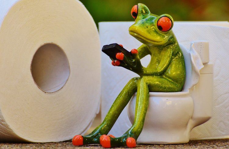 Session Frog Toilet Funny Wc Toilet Paper Loo